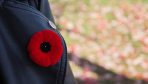 A poppy on a leather jacket collar.